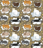 Cats seamless funny background Stock Photos