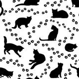 Cats seamless pattern. Kitten silhouette background. Cats seamless pattern. Playful kitten silhouette pattern over white  background Stock Photos