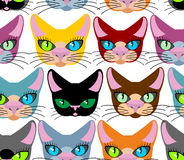 Cats seamless pattern. Many different pets. Vector background of Stock Photo