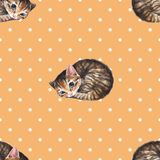 Cats, seamless pattern. Watercolor cats, seamless pattern, polka dot Royalty Free Stock Image