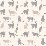 Cats seamless silhouette Stock Photos