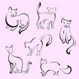 Cats  Set Royalty Free Stock Images