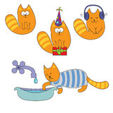 Cats set Stock Images
