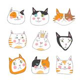 Cats, set of cute doodle. Funny stylish muzzle. Hand drawn children`s pattern. Vector illustration isolated on white Stock Photography