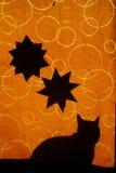 Cats shadow Royalty Free Stock Photo