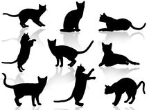 Cats silhouette. Illustration about funny cats silhouette in typical poses Royalty Free Stock Photo