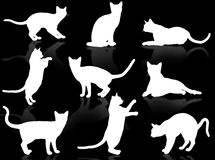 Cats silhouette. White funny cats silhouette in typical poses stock illustration