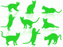 Cats silhouette Royalty Free Stock Photos