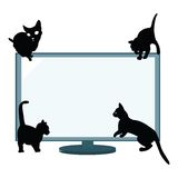Cats silhouettes Stock Photos