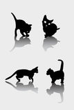 Cats silhouettes Royalty Free Stock Photography
