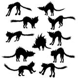 Cats silhouettes Stock Images