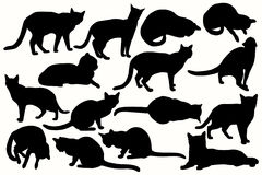 Cats_silhouettes Photographie stock libre de droits