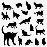 Cats Silhouettes Royalty Free Stock Image