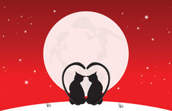 Cats sit down moonlight. Valentine day love Royalty Free Stock Image