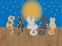 Cats sit on a fence. Vector illustration. Stock Photos