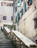 Cats sitting on the parapet waiting someone to throuw some food. Out the window for them in the old town of Kotor, Montenegro royalty free stock photo