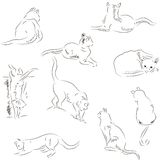 Cats sketches set Stock Image