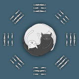 Cats sleeping in shape of Zen, Yin Yang Stock Images