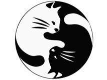 Cats are sleeping - a symbol of Ying Yang. Kittens are sleeping and their silhouette is reminiscent of the symbol Ying Yang. stock illustration