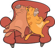 Cats on a sofa Stock Photo