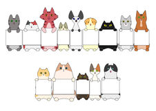Cats standing with the card Royalty Free Stock Images