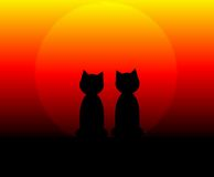 Cats at Sunset. A computer generated illustration of 2 cats at sunrise/sunset.  Can be used fro Halloween Stock Photos