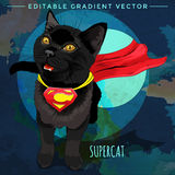 Cats superheroes. SuperCat Stock Image