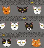 Cats think about fish. In white, gray, red, pink, yellow, black a seamless pattern on a gray background Stock Photography