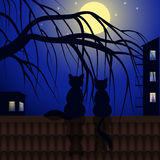 Cats on tiled roof Royalty Free Stock Images