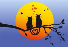 Cats on tree branch, vector vector illustration