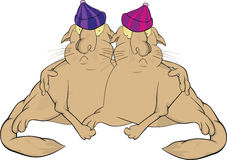 Cats twins . Cartoon Royalty Free Stock Image