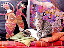 Cats. Two cats rest on a colorful sofa stock photos