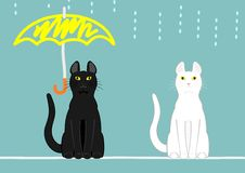 Cats with umbrella and no umbrella Royalty Free Stock Image