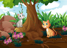 Cats under the tree Royalty Free Stock Image