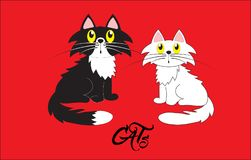 Cats, vector illustration. Black cat and white kitty. On a red background. Family cartoon illustration Royalty Free Stock Image