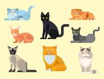 Cats vector illustration cute animal funny decorative kitty characters. Cats vector illustration cute animal funny decorative characters color abstract feline Stock Photography