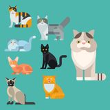 Cats vector illustration cute animal funny decorative kitty characters. Cats vector illustration cute animal funny decorative characters color abstract feline Royalty Free Stock Image
