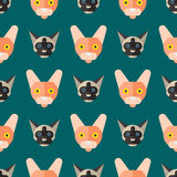 Cats vector illustration cute animal seamless pattern funny decorative kitty characters feline domestic trendy pet Royalty Free Stock Photos