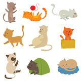 Cats vector set. Cats collection vector silhouette. Cute domestic cats different animals. Different cats young adorable tail symbol playful paw. Cartoon funny Royalty Free Stock Photo