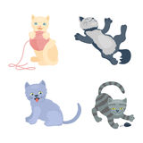 Cats vector set. Cats collection vector silhouette. Cute domestic cats different animals. Different cats young adorable tail symbol playful paw. Cartoon funny Stock Image