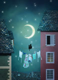 Cats in the village at night. Two cats on a rope are looking at the moon in a town at night Stock Photo