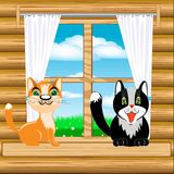 Cats on window Royalty Free Stock Photography