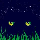 Cats Yellow Eyes and Stars in the Night. Funny illustration with a magic cat eyes, grass and stars on a blue background. Creative design in horror, darkness Stock Image