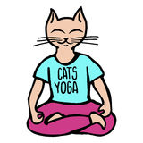Cats yoga illustration Royalty Free Stock Photo