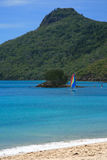 catseye de plage Image libre de droits