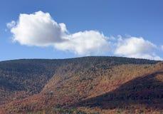 Catskill berg i höst royaltyfri bild