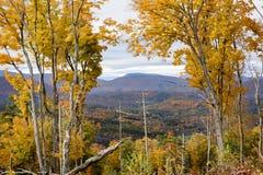 Catskill Mountain Autumn. A scenic view through Autumn trees foliage to the Catskill Mountains beyond royalty free stock image