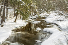 Catskills Frozen Stream Royalty Free Stock Images