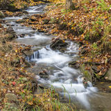 Catskills lövrik ström royaltyfria bilder