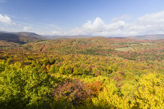 Catskills maximumfärg på borsten Ridge arkivbild